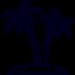 palm-tree-min